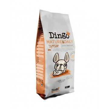 Dingo Mature & Daily