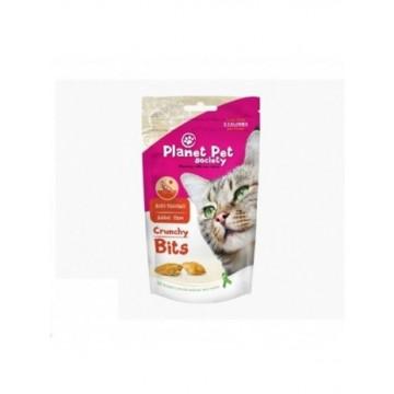 Planet Pet Gato Crunchy Bites pelo y piel 40gr