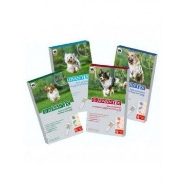 Advantix Bayer (4p) 1-4kg