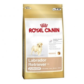 Royal Canin Labrador Retriever Junior 33 12Kg +2 Kg OFERTA