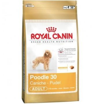 Royal Canin Poodle 30 0,5 kg
