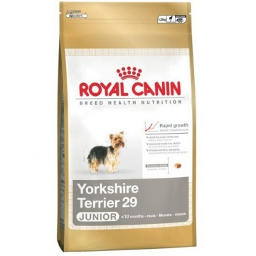 Royal Canin Yorkshire Terrier Junior 29 0,5 kg