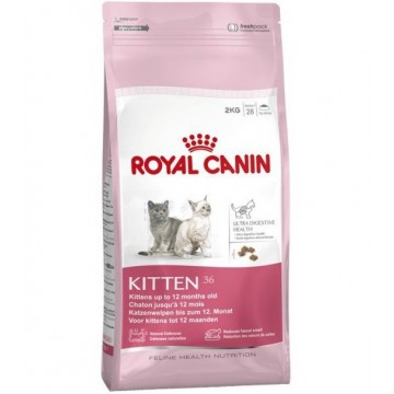 Royal Canin Feline Kitten 36 0,4 kg