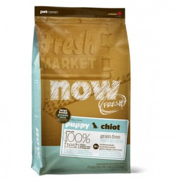 Now Grain Free Large Breed Puppy Dog 11.3kg