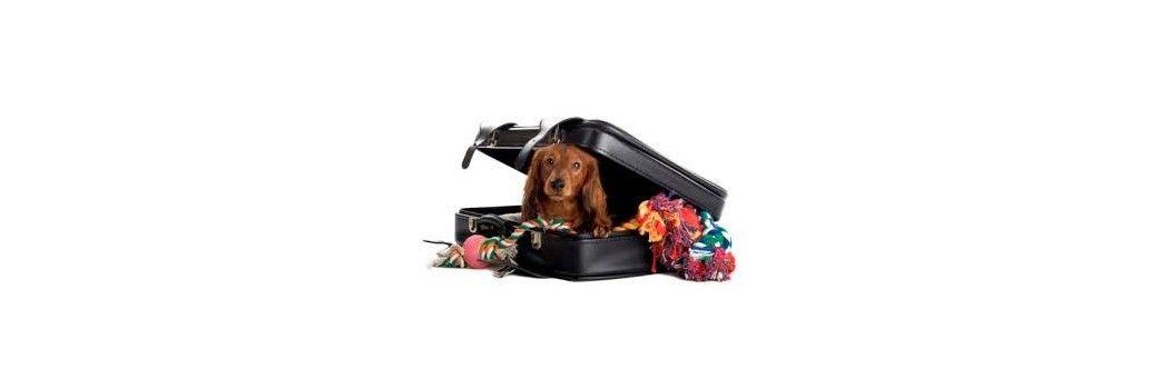 correas transportín y accesorios de viaje para perros y gatos