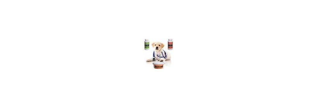 Complementos alimenticios para perros y gatos