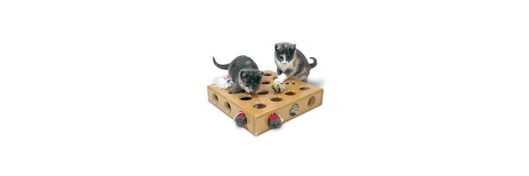 Juguetes y rascadores para gatos