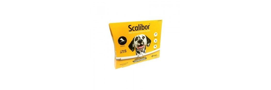 Antiparasitarios externos para perros y gatos en collar y pipeta