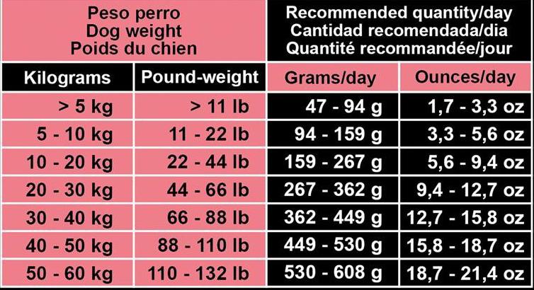 Porción diaria Arquivet Sensitive Salmon and Potatoes